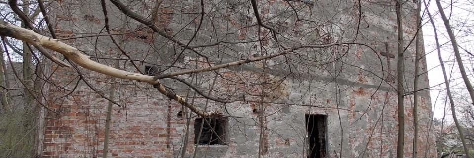 Ruinka przy Trawiastej 1